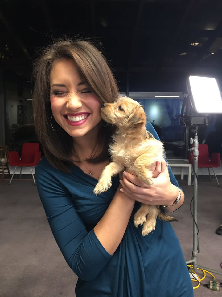 <div class='meta'><div class='origin-logo' data-origin='none'></div><span class='caption-text' data-credit='KGO-TV'>ABC7's Jessica Castro is seen holding a puppy at our adoption event with our Perfect Pet partners in honor of National Puppy Day in San Francisco on Thursday, March 23, 2017.</span></div>