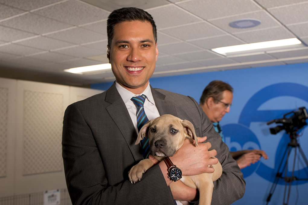 <div class='meta'><div class='origin-logo' data-origin='none'></div><span class='caption-text' data-credit='KGO-TV'>ABC7's Reggie Aqui is seen holding a puppy at our adoption event with our Perfect Pet partners in honor of National Puppy Day in San Francisco on Thursday, March 23, 2017.</span></div>