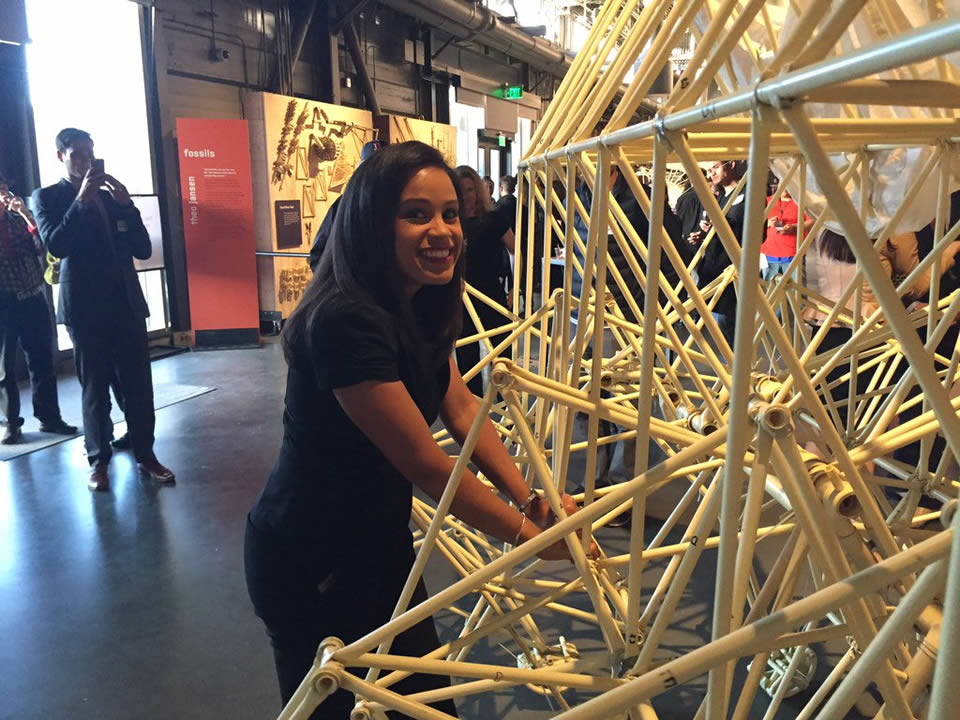 "<div class=""meta image-caption""><div class=""origin-logo origin-image none""><span>none</span></div><span class=""caption-text"">ABC7's Ama Daetz plays with an art installation at the Exploratorium's Strandbeest exhibit in San Francisco on Wednesday, May 25, 2016. (Larry Beil/KGO-TV)</span></div>"