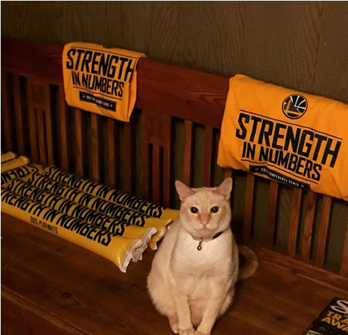 <div class='meta'><div class='origin-logo' data-origin='none'></div><span class='caption-text' data-credit='Tag your photos on Facebook, Twitter, Google Plus or Instagram using #DubsOn7.'>This cat sent in by Instagram user @ilove_mondays is digging the Warriors in a major way!.</span></div>