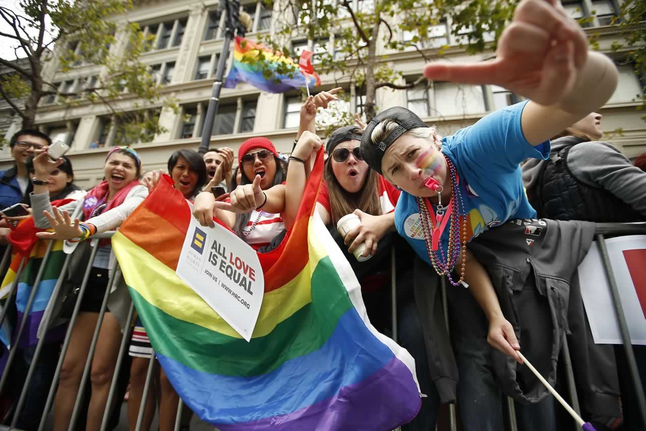 <div class='meta'><div class='origin-logo' data-origin='none'></div><span class='caption-text' data-credit='AP Photo/Tony Avelar'>Crowds cheer on the performers during the 45th annual San Francisco Gay Pride parade Sunday, June 28, 2015, in San Francisco.</span></div>