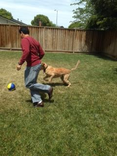 Skooter playing soccer! Keep sending in your World Cup fan photos! <span class=meta>(photo submitted by April Ali via uReport)</span>
