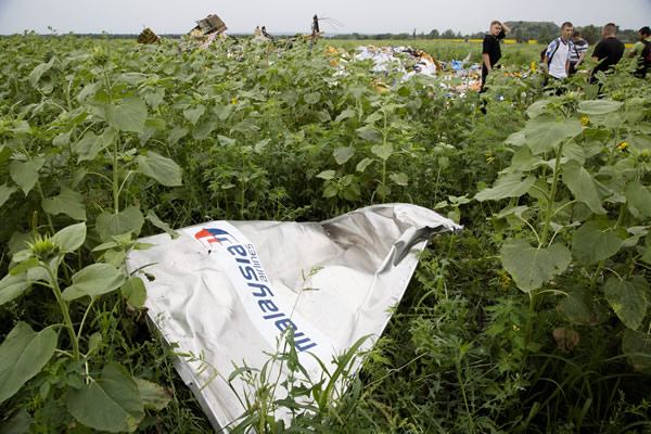 A piece of a plane with the sign &#34;Malaysia Airlines&#34; lies in the grass near the village of Rozsypne, Ukraine, July 18, 2014. (AP Photo/Dmitry Lovetsky) <span class=meta></span>