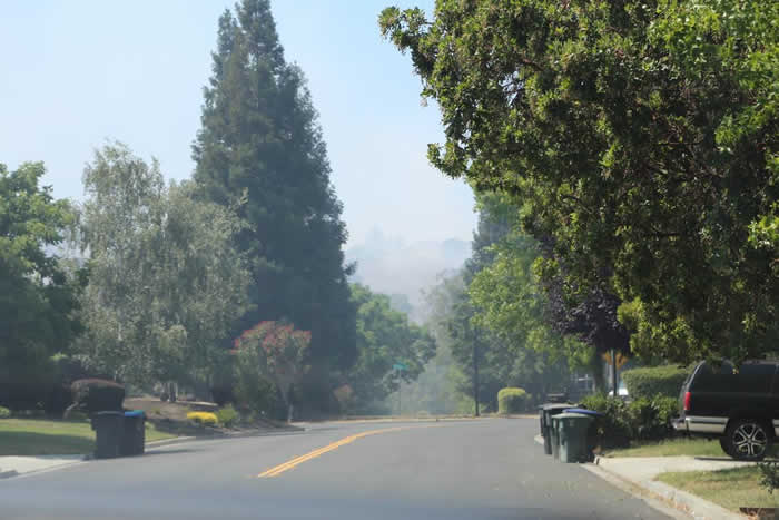"""<div class=""""meta image-caption""""><div class=""""origin-logo origin-image none""""><span>none</span></div><span class=""""caption-text"""">A grass fire burned along I-680 in Sunol on Monday, July 20, 2015 (Photo submitted by Carolyn Zalewski)</span></div>"""