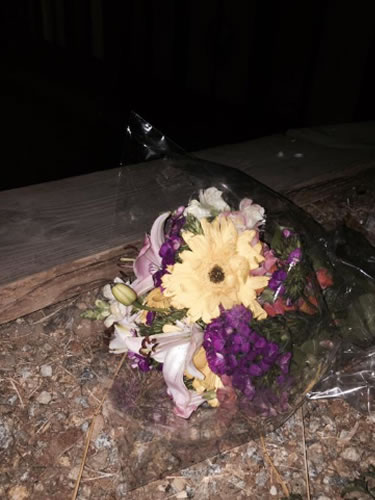 "<div class=""meta image-caption""><div class=""origin-logo origin-image none""><span>none</span></div><span class=""caption-text"">Flowers were left at an apartment complex in Santa Cruz, Calif. on Monday, July  27, 2015 where an 8-year-old missing girl was last seen. (KGO-TV )</span></div>"