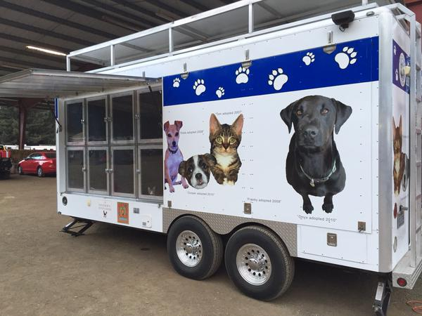 <div class='meta'><div class='origin-logo' data-origin='none'></div><span class='caption-text' data-credit='KGO-TV'>Animal services providing food, medicine & even toys for animal evacuees at Napa County Fairgrounds in Calistoga, Calif., on Tuesday, September 15, 2015.</span></div>