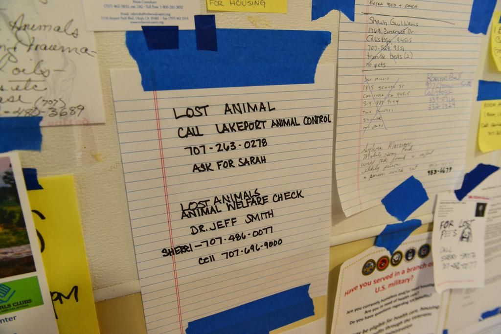 <div class='meta'><div class='origin-logo' data-origin='none'></div><span class='caption-text' data-credit='KGO-TV'>A message board was set up at the Napa County Fairgrounds in Calistoga, Calif. on Tuesday, September 15, 2015 to help evacuees recover or take care of their pets.</span></div>