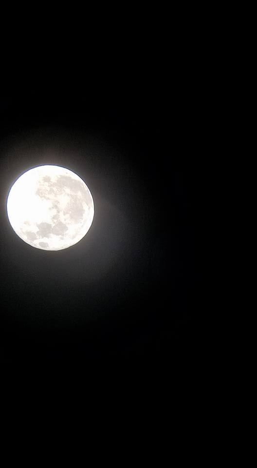 "<div class=""meta image-caption""><div class=""origin-logo origin-image none""><span>none</span></div><span class=""caption-text"">ABC7 viewers shared their photos of the harvest moon on Friday, September 16, 2016.  (Photo submitted to KGO-TV by Jessica M./Facebook)</span></div>"