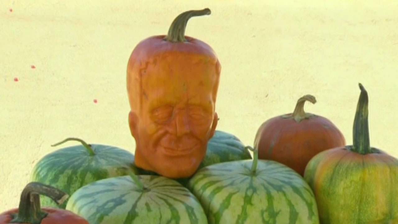 Pumpkin farmer gives people a scare by growing ghoulish ...