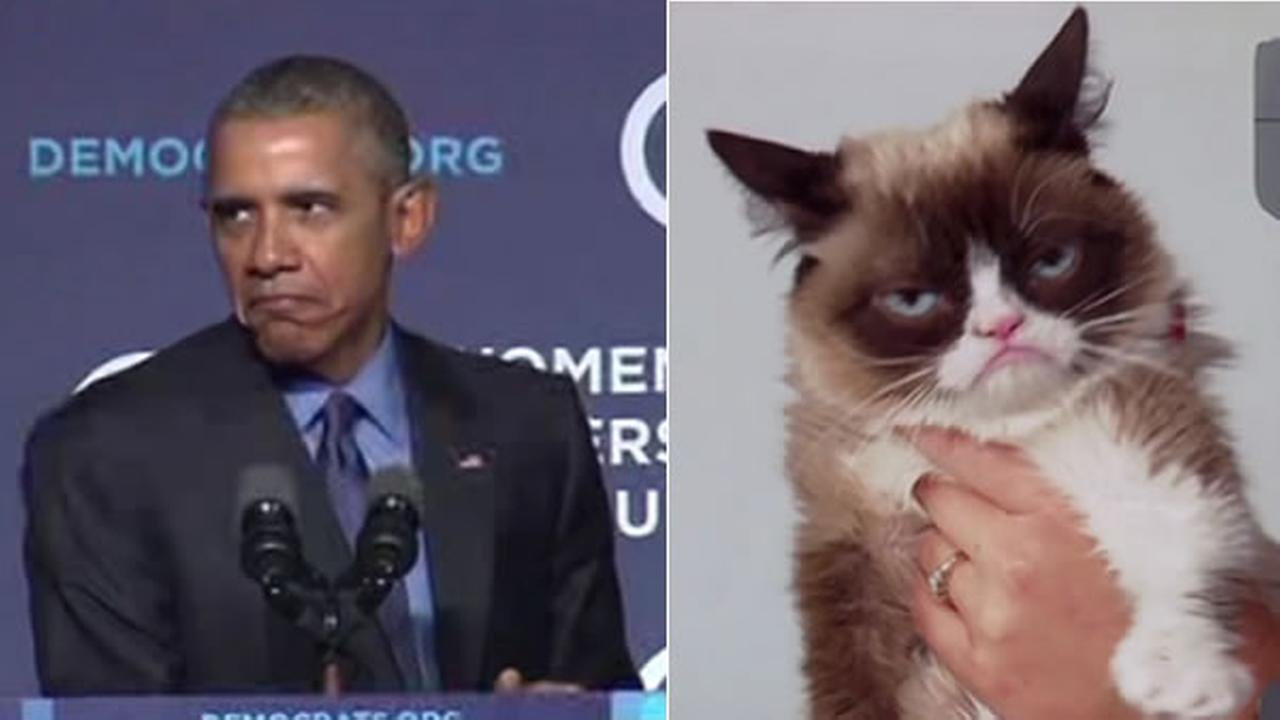 President Obama did his best Grumpy Cat impression on Friday, October 23, 2015 in Washington, D.C.