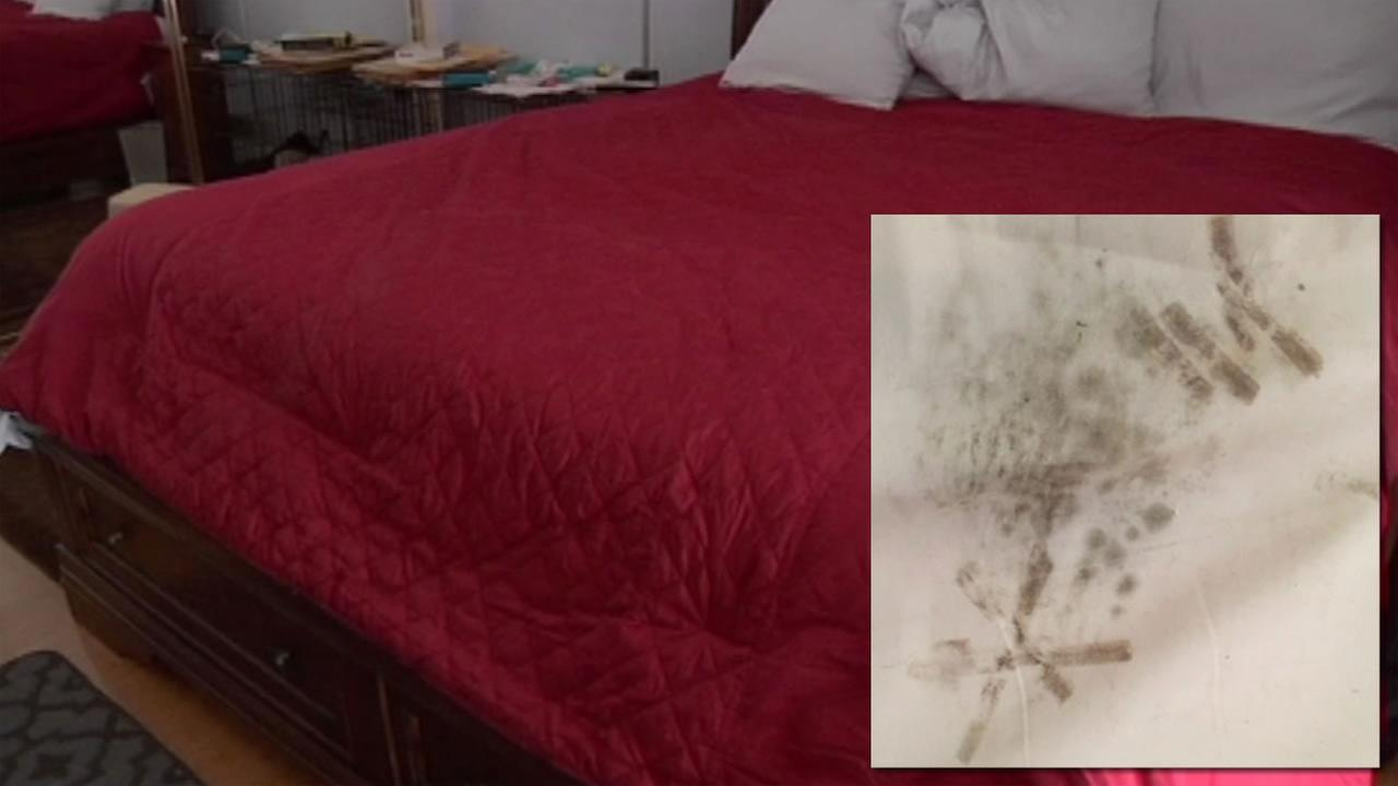 This undated images showsa photo of mold taken from underneath a TempurPedic mattess and the bed that belongs to San Mateo, Calif. woman Stacie Nevares.