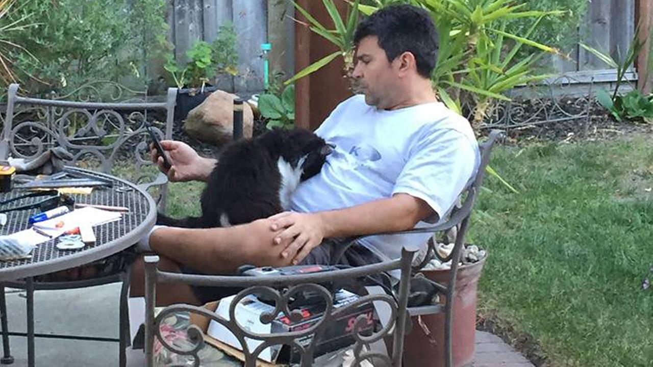 Meteorologist Mike Nicco is sharing a photo of his favorite feline friend on National Cat Day.