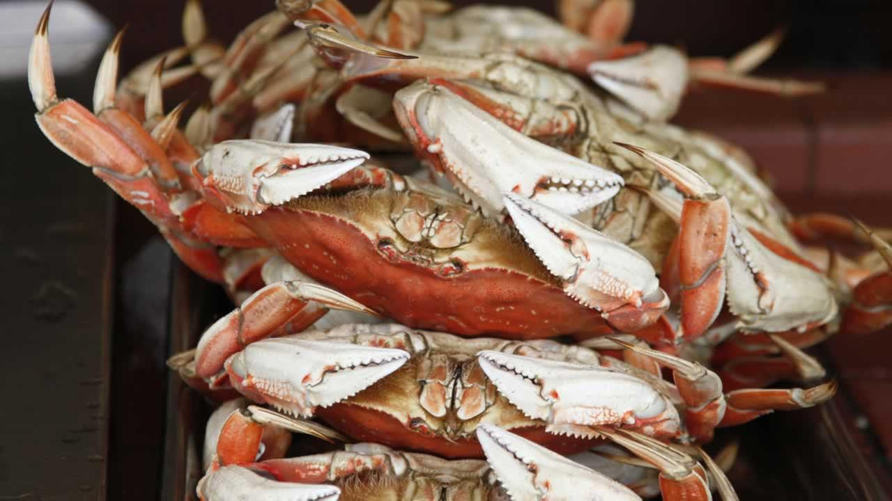 Dungeness crabs are shown for sale at Fishermans Wharf in San Francisco, Friday, Feb. 6, 2009.
