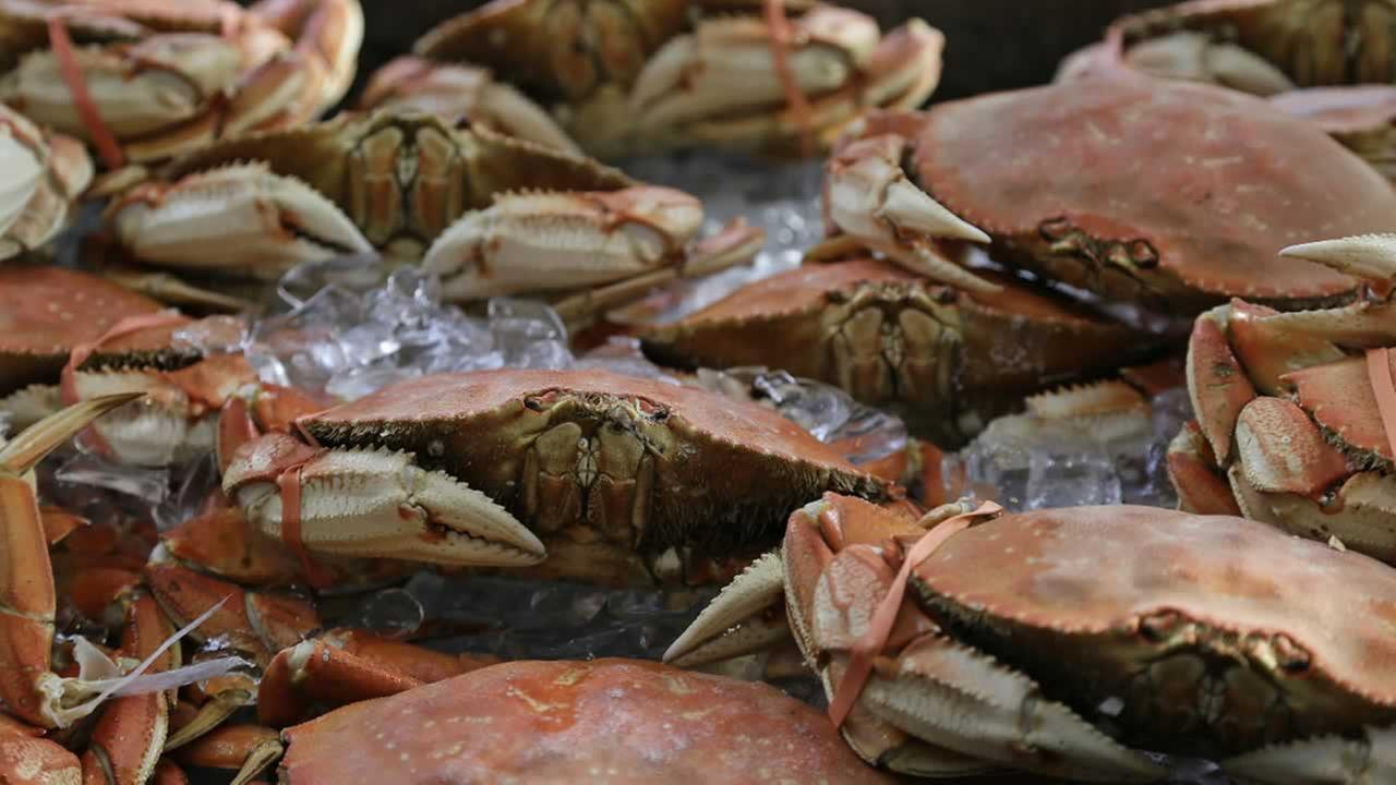 Imported Dungeness crabs are shown for sale at Fishermans Wharf Thursday, Nov. 5, 2015, in San Francisco.