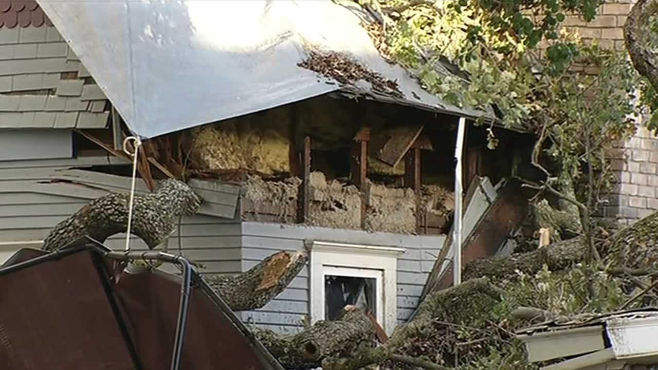 A part of an oak tree, one of the last in the community, had fallen onto a part of s historic house in Morgan Hill, Calif. on Tuesday, November 24, 2015.
