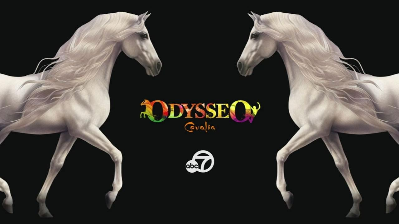 ABC7 Presents: Discover Odysseo by Cavalia, airing Saturday, November 28, 2015 at 10:30 p.m.