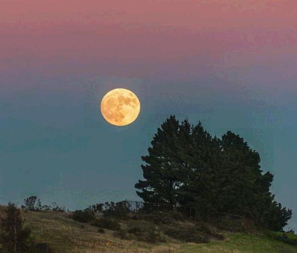 "<div class=""meta image-caption""><div class=""origin-logo origin-image none""><span>none</span></div><span class=""caption-text"">Super moon seen as seen from Grizzly Peak, California, Sunday, November 14, 2016. (Instagram/Pixelmama)</span></div>"