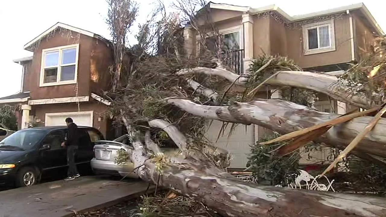 A tree falls on a car and home in San Pablo, Calif. on Sunday, December 13, 2015.