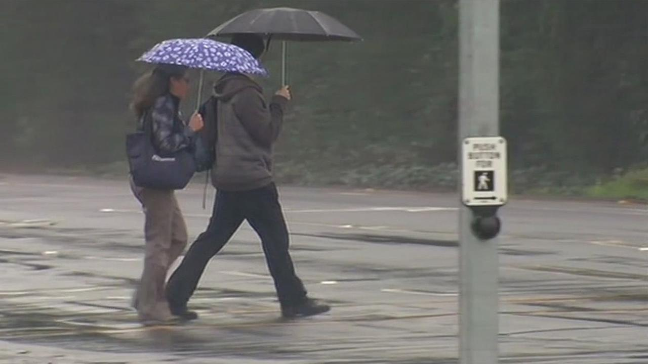 People hold umbrellas while in a crosswalk during a rainstorm in Sonoma County, Calif. on Thursday, January 14, 2016.