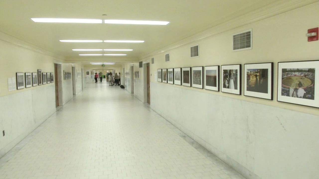 The walls of San Francisco City Hall have been transformed into an art gallery.
