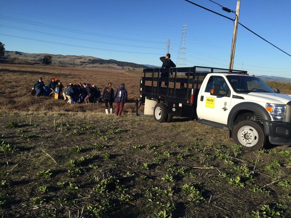 <div class='meta'><div class='origin-logo' data-origin='none'></div><span class='caption-text' data-credit='KGO-TV'>Vets sedated the elephant seal attempting to cross a Sonoma County Highway on Tuesday, December 29, 2015.</span></div>