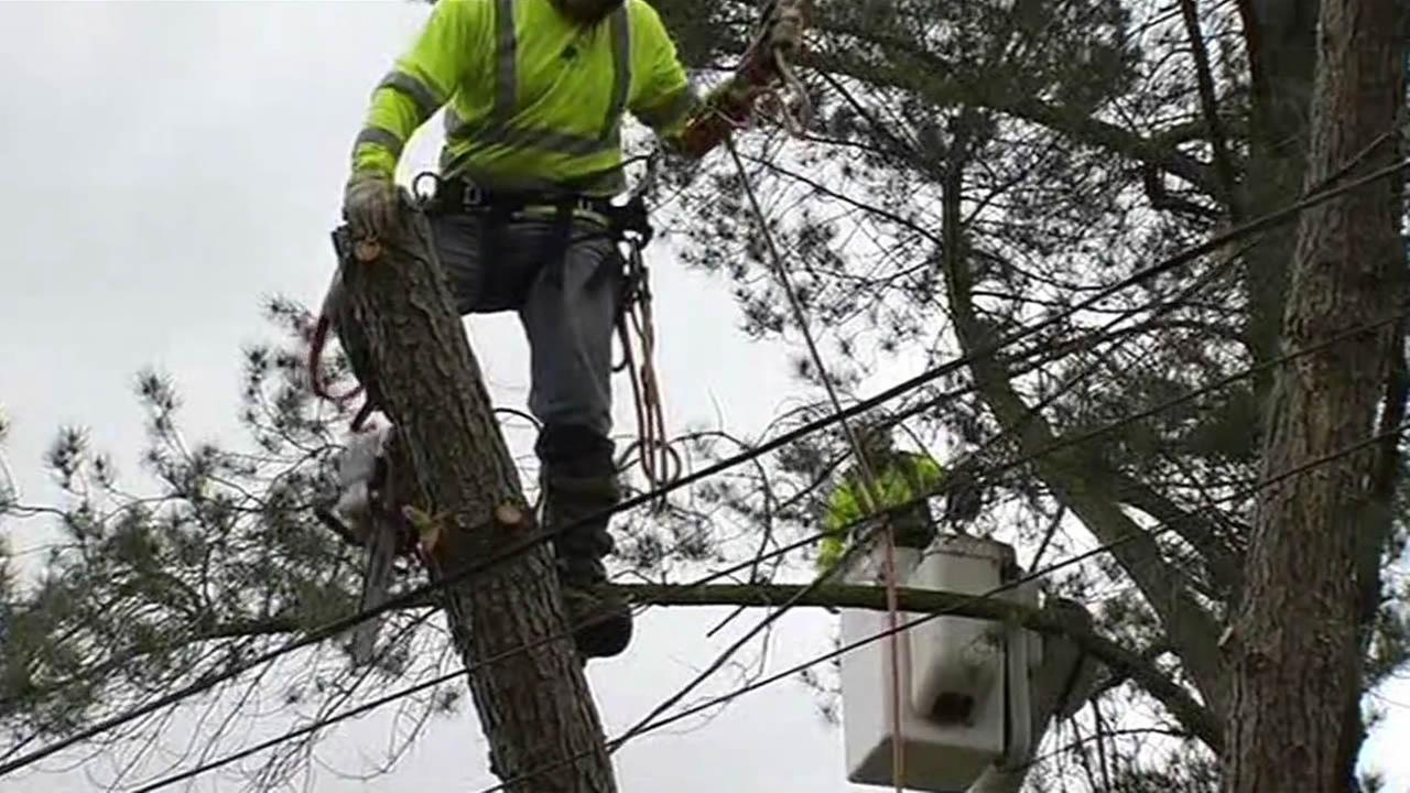 Crew works to clear branches from power lines in Oakland, Calif., on Friday, March 4, 2016. KGO-TV