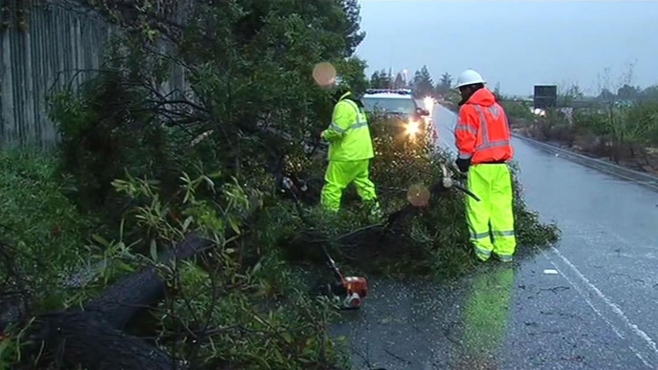 Crew work to remove downed trees along Stevens Creek Blvd. in San Jose, Calif., on Saturday, March 5, 2016.KGO-TV