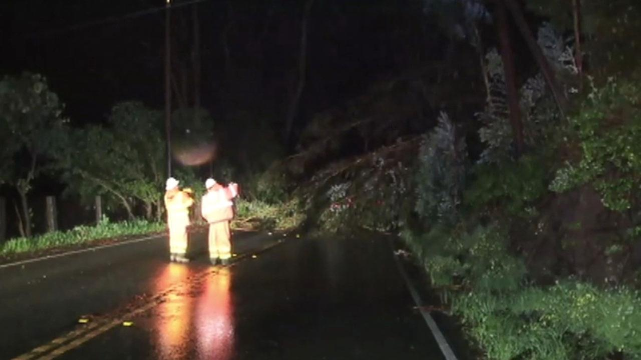 Trees blocks Highway 92 in Half Moon Bay at Skyline Boulevard, Monday, March 7, 2016.KGO-TV