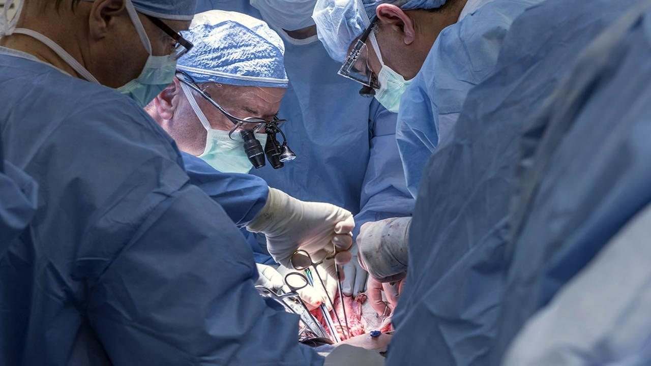 In this Wednesday, Feb. 24, 2016, photo provided by Cleveland Clinic Center, a team of Cleveland Clinic transplant surgeons and gynecological surgeons a uterus transplant.