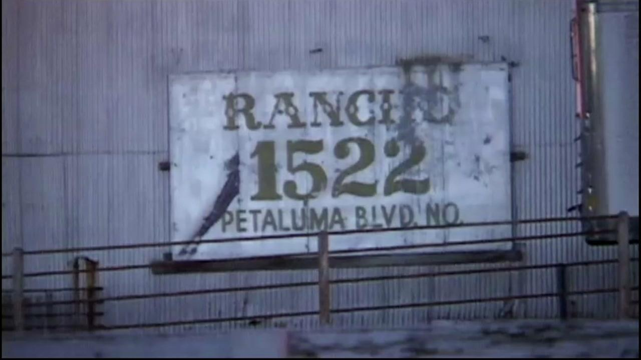 This image shows the exterior of the Rancho Feeding Corp. in Petaluma, Calif.