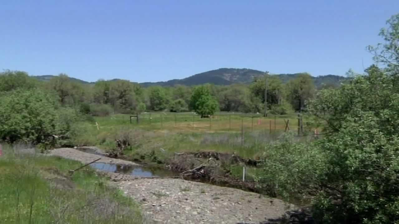 The U.S. Army Corps of Engineers has suspended the permit for the controversial Willits Bypass project.