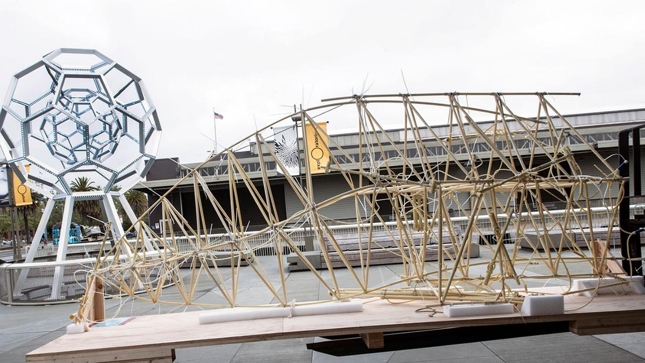 This image shows the Strandbeest kinetic sculptures being set up at San Franciscos Exploratorium for an exhibit that will be on display between May 27 through Sept. 5, 2016.