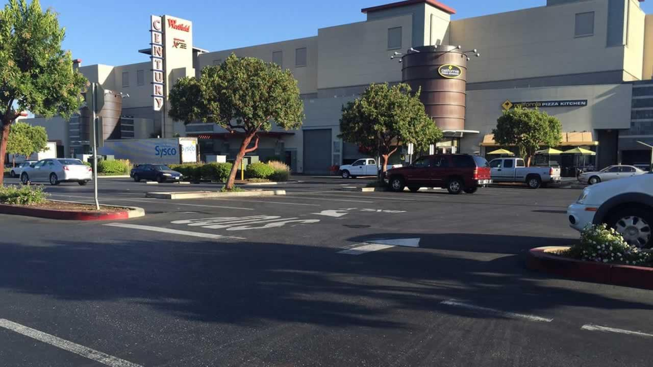 A 6-year-old boy was hit and killed in the Oakridge Mall parking lot in San Jose, Calif. on Thursday, June 30, 2016.