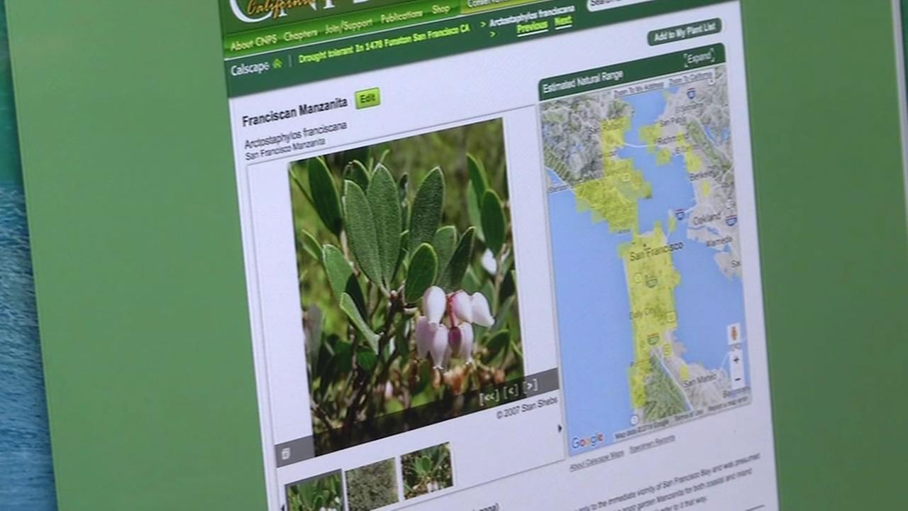 This image shows a the California Native Plant Societys website.