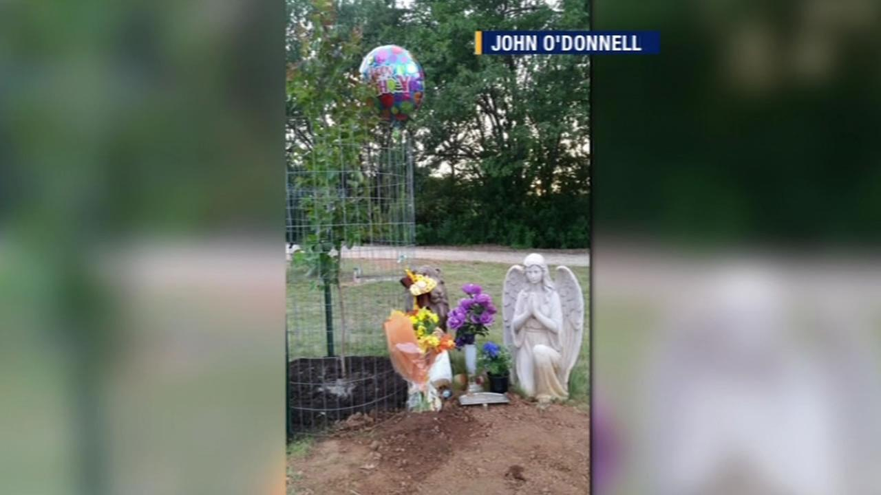 This image shows statues that were stolen from the grave of John ODonnells infant son in Lakeport, Calif.