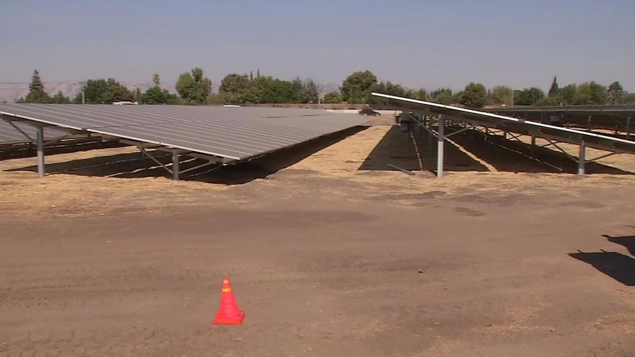 This image shows solar panels that are being isntalled near an Ohlone indian burial ground on August 10, 2016.