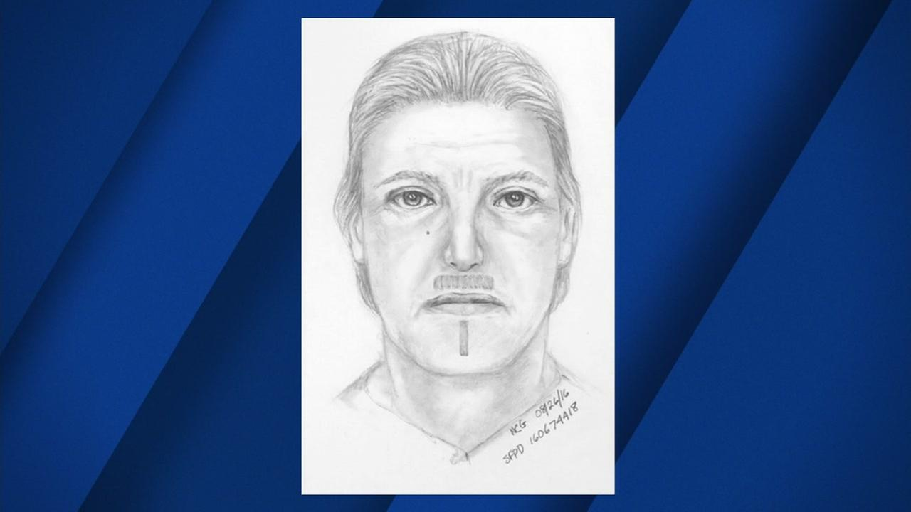 San Francisco police have released a sketch of the man who possibly attacked a woman by repeatedly punched her in the face near Lafayette Park.