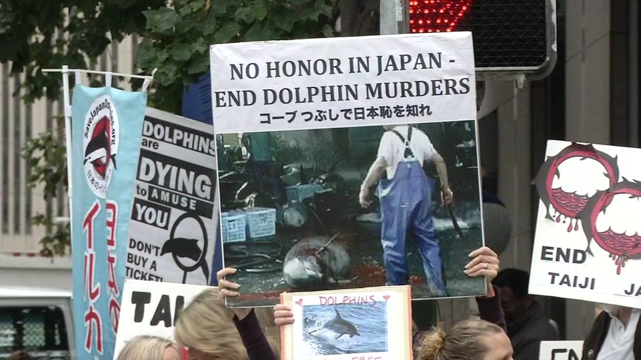 Protesters demonstrated outside San Franciscos Japanese Consulate on Thursday, September 1, 2016, joining protests worldwide.