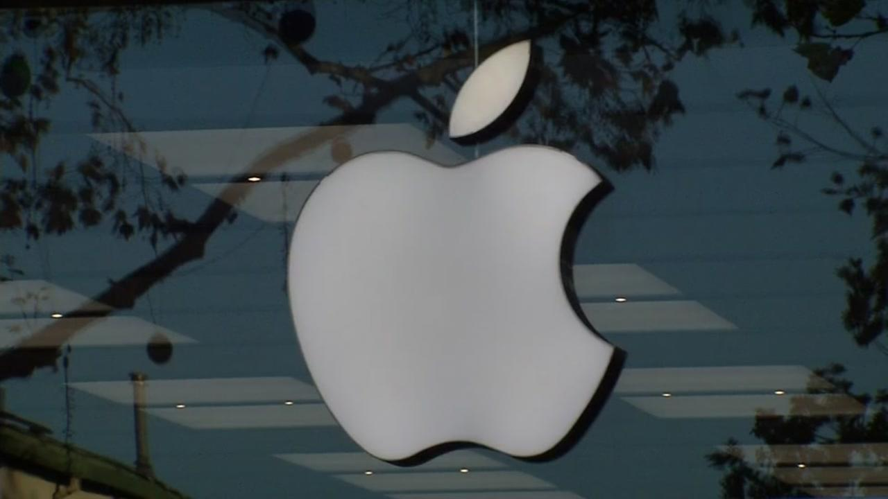 This is an undated image of an apple store logo.