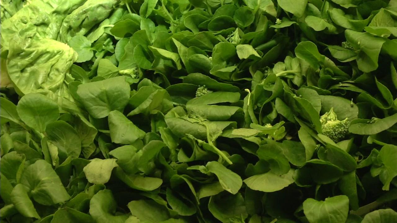 Leafy greens are seen at a grocery store in this undated image.
