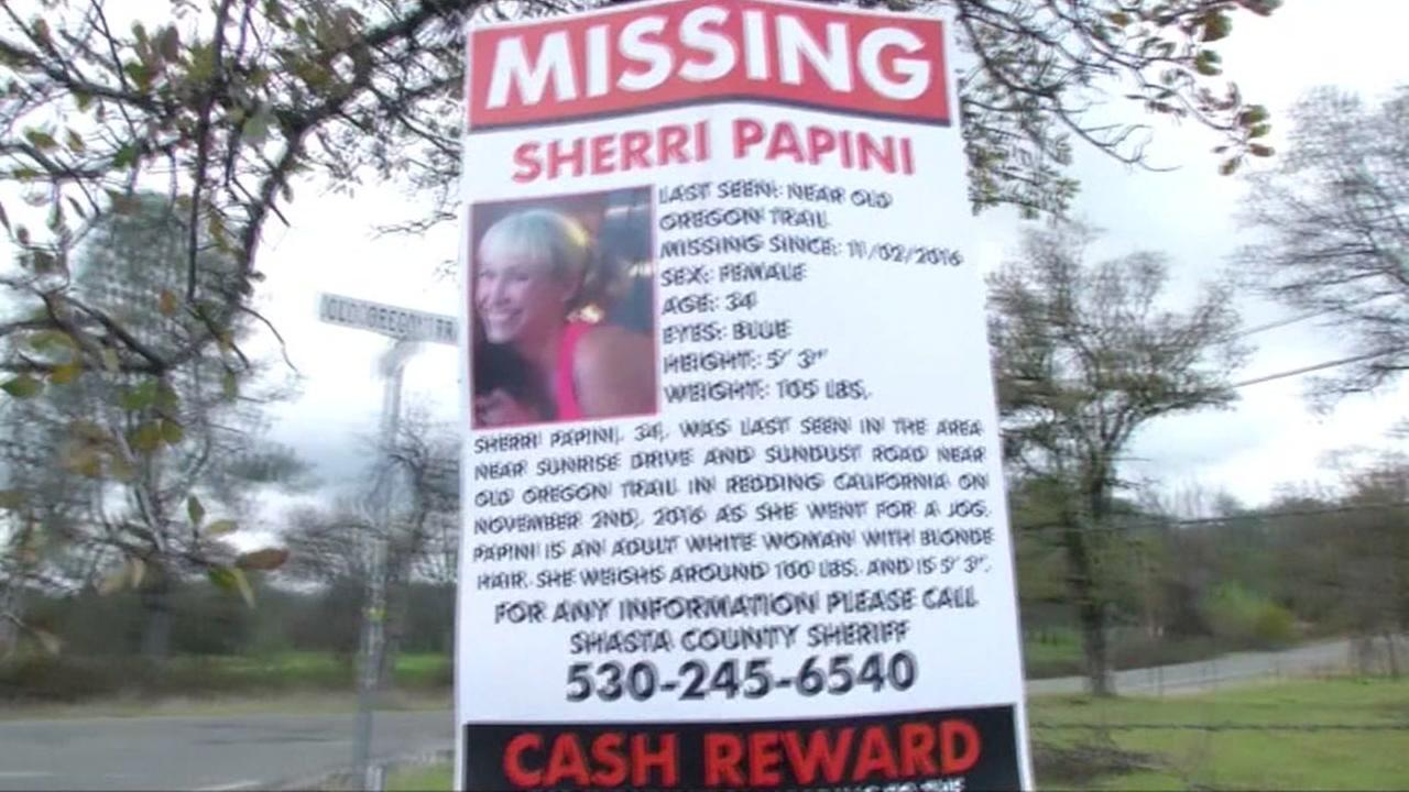This is an undated image of a flyer featuring former missing person Sherri Papini.