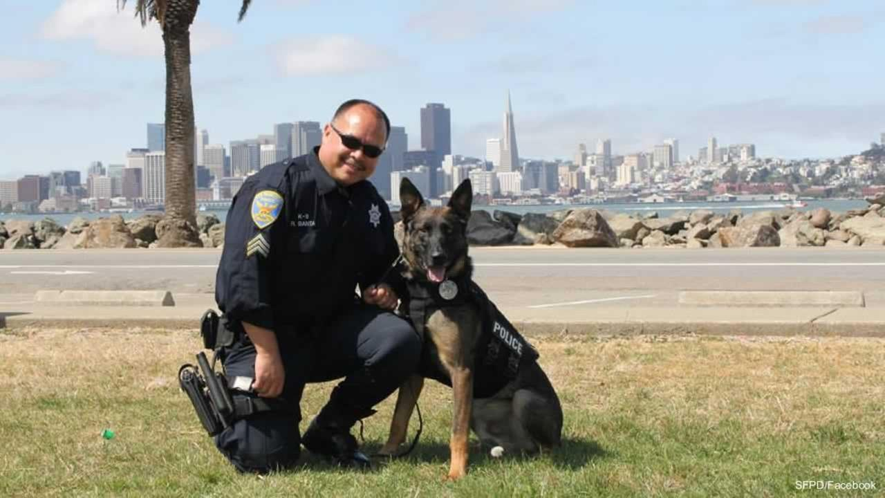 The SFPDs four-legged officers will now wear bullet-proof vests, just like their handlers.