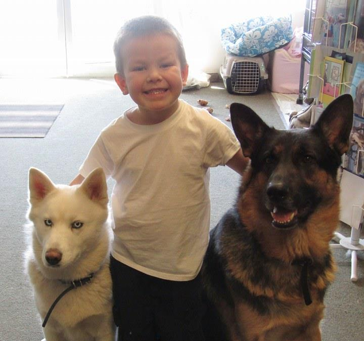 <div class='meta'><div class='origin-logo' data-origin='none'></div><span class='caption-text' data-credit='Photo submitted to KGO-TV by Elaine Figg-Hoblyn/Facebook'>A little boy appears with his two dogs in this undated image.</span></div>