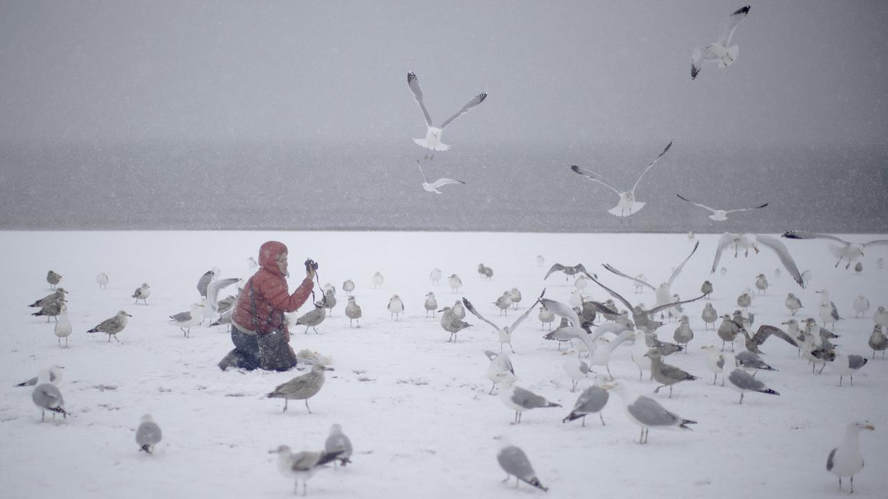 A woman photographs seagulls on the beach on New Yorks Coney Island during a snow storm Friday, March 10, 2017.