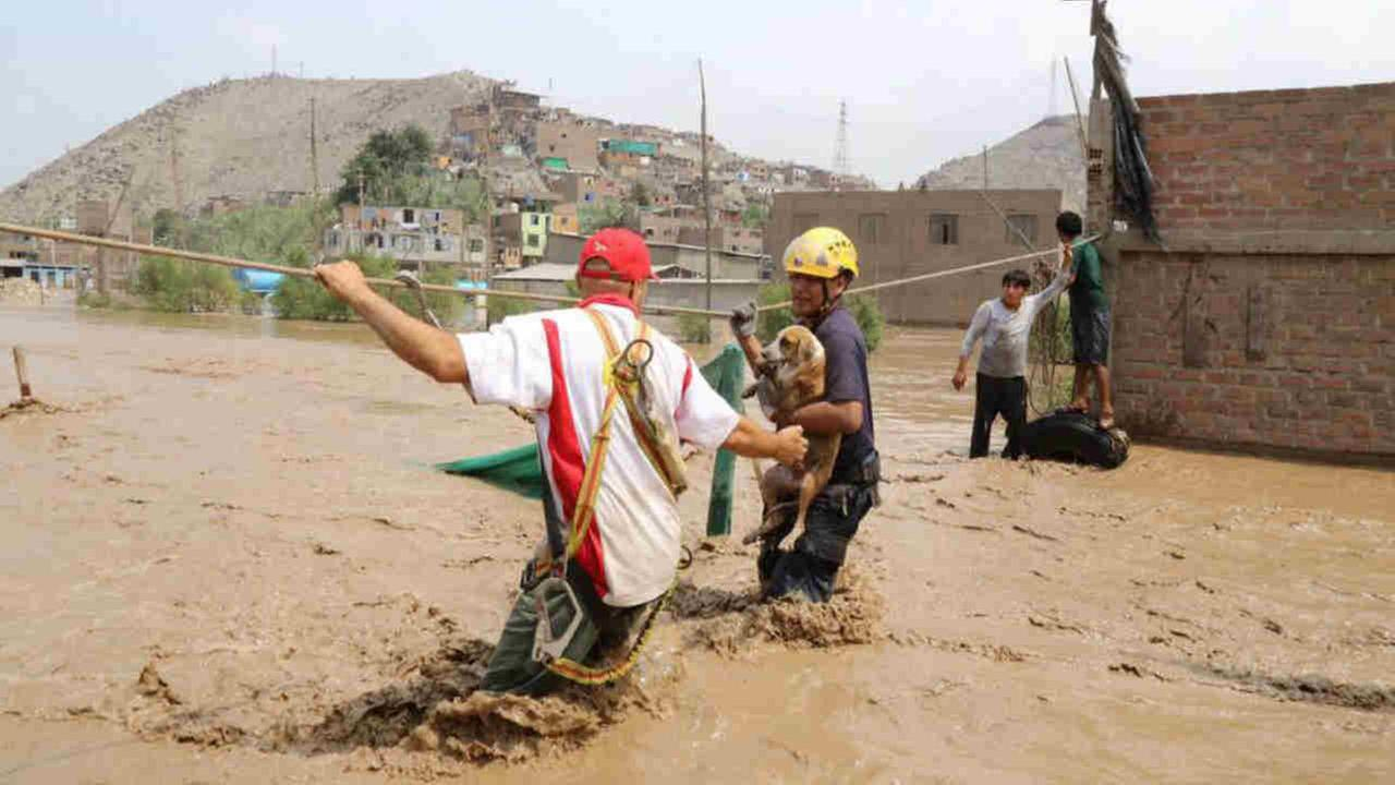 People and pets had to be rescued from flooding in and around Lima, Peru.