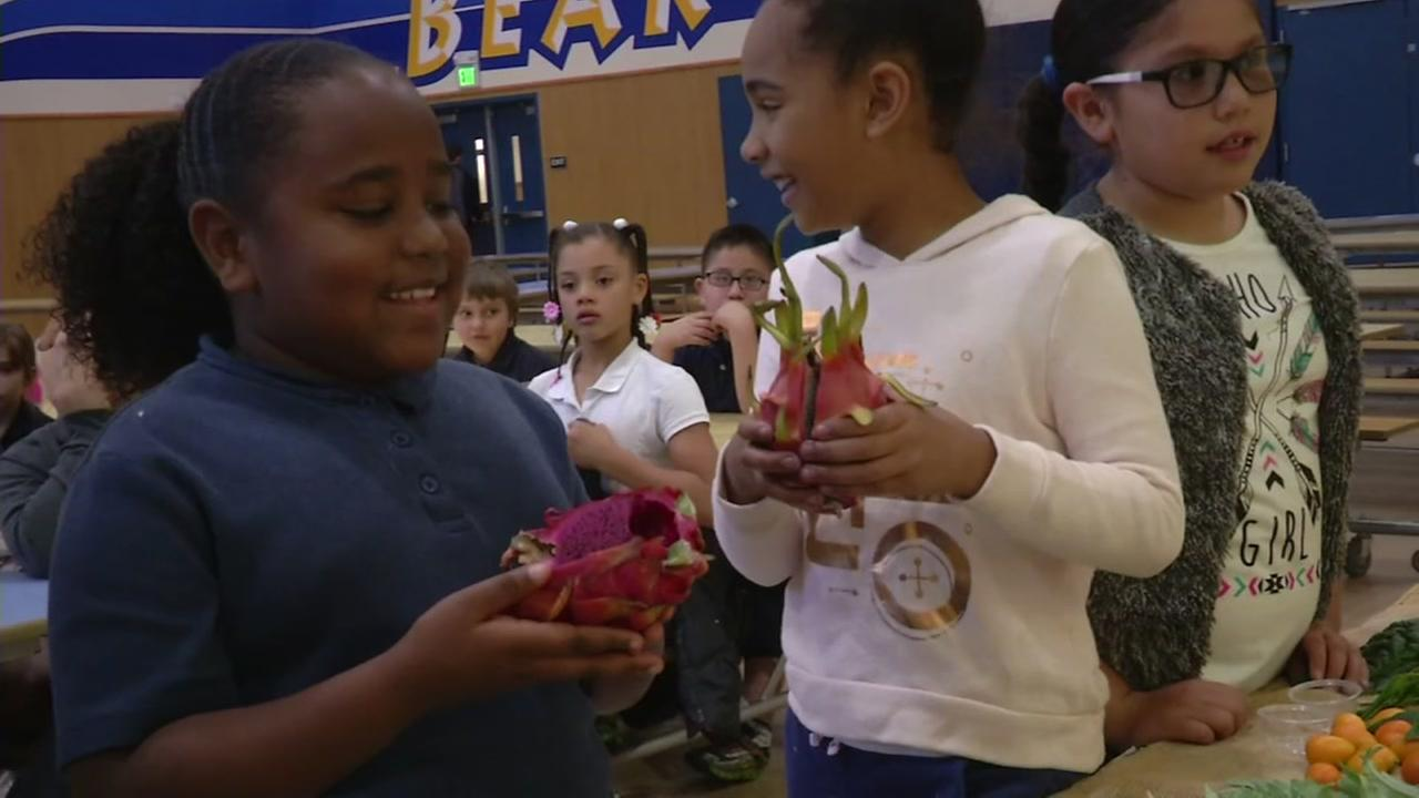 Third-graders sample bizarre food at Heights Elementary School in Pittsburg, Calif. on Friday, April 28, 2017.