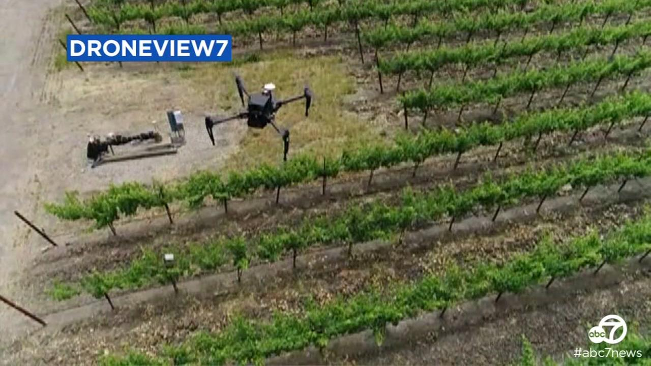This undated image shows DroneView7 recording video of a drone flying in wine country in Napa, Calif.