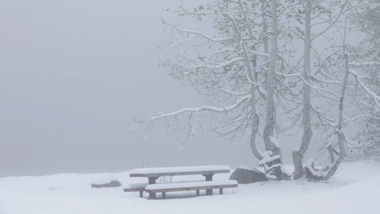 Snow covers a picnic table at Serene Lakes, Monday, June 12, 2017, near Soda Springs, Calif. A rare winter-like storm brought more snow to the Sierra Nevada, Monday.