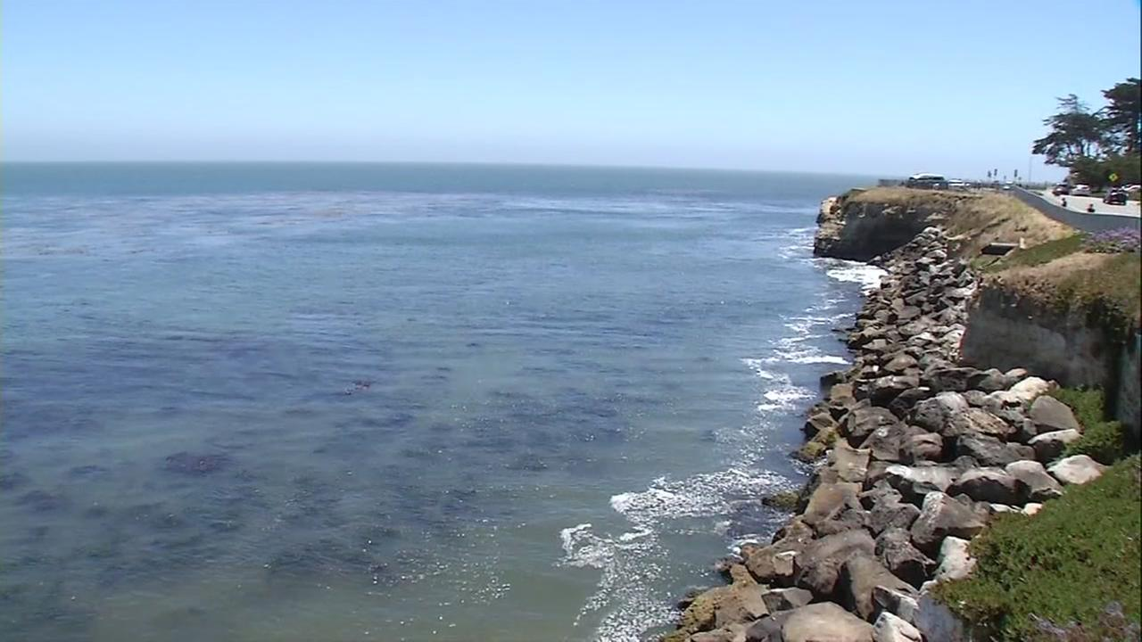 Shark attack in Santa Cruz triggers beach closure