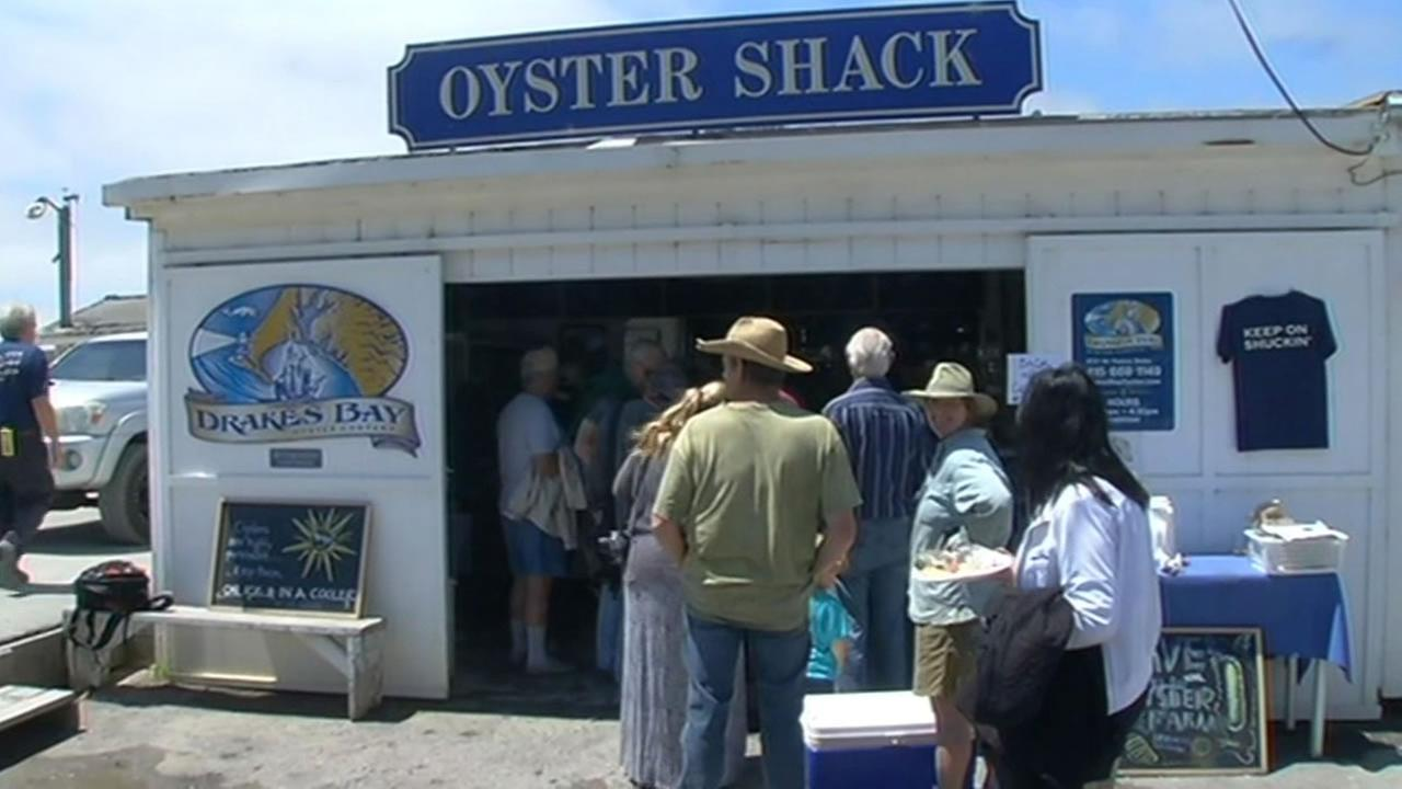 Drakes Bay Oyster Companys Oyster Shack